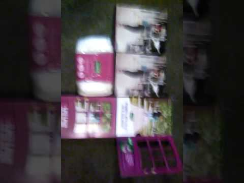 Free Depend Adult Diaper Samples by Mail