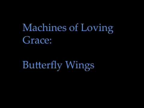 Machines of Loving Grace -- Butterfly Wings