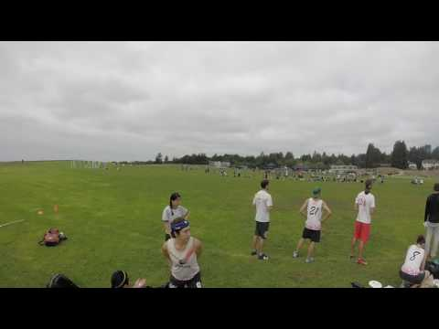 Video 546