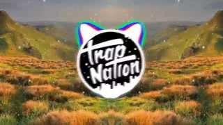 Bro Safari - Bender Video