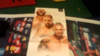 WWE Evolution Poster