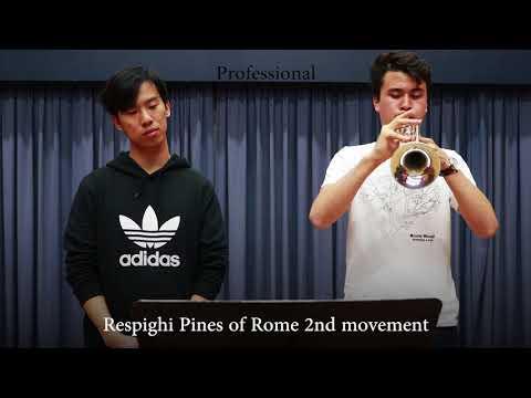 Professional vs Beginner Trumpet