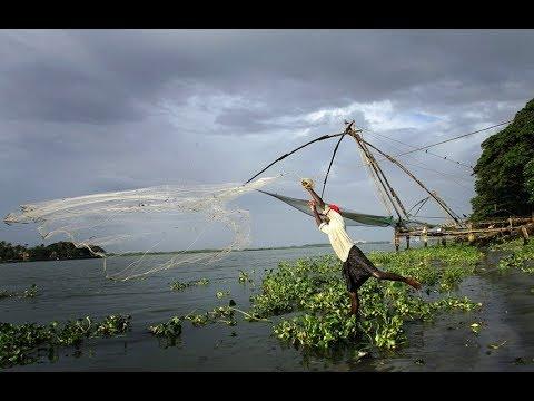 Fort Kochi Beach Fun | Fishing | Cooking | Chinese Fishing nets | Cochin Kerala