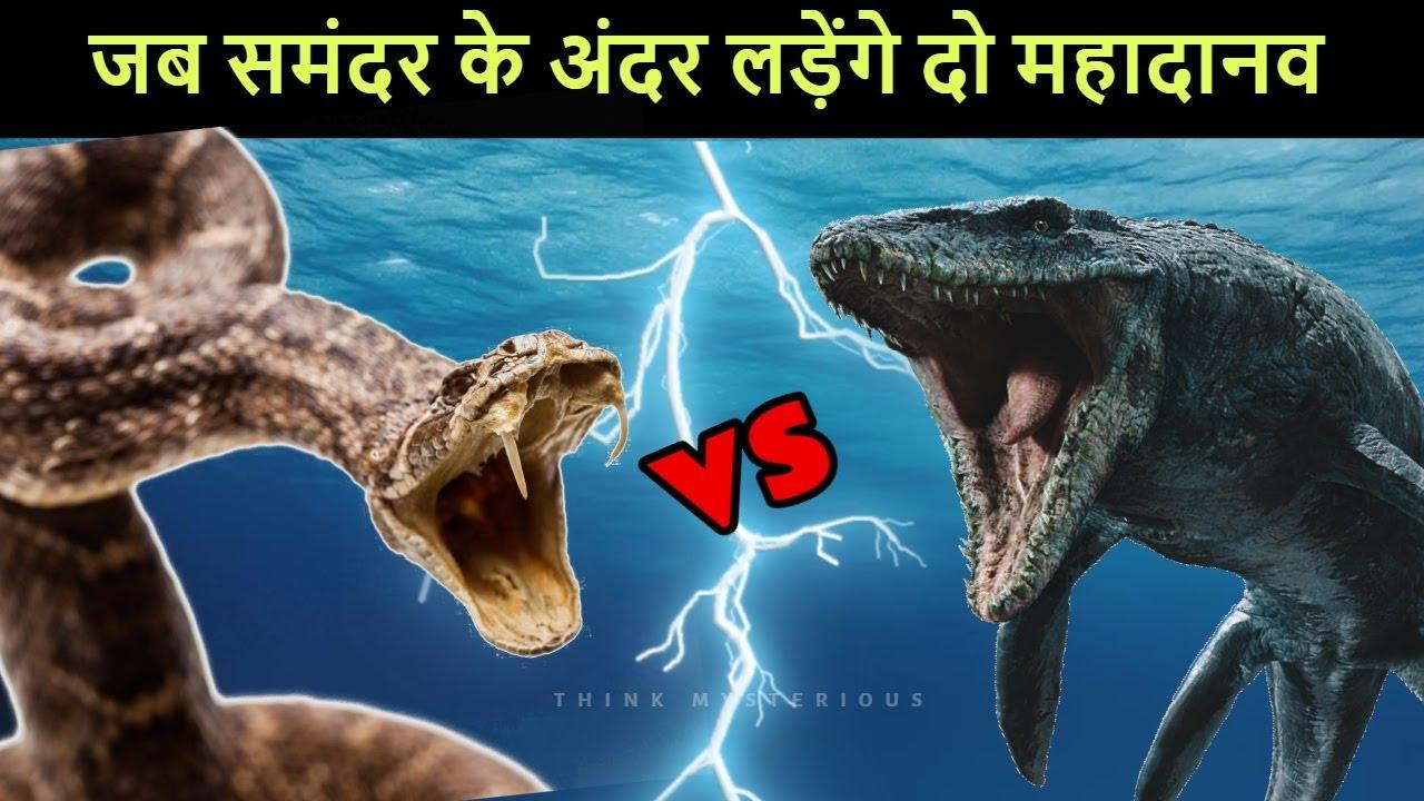 Titanoboa vs Mosasaurus कौन जीतेगा जब लड़ेंगे समंदर के दो महादानव