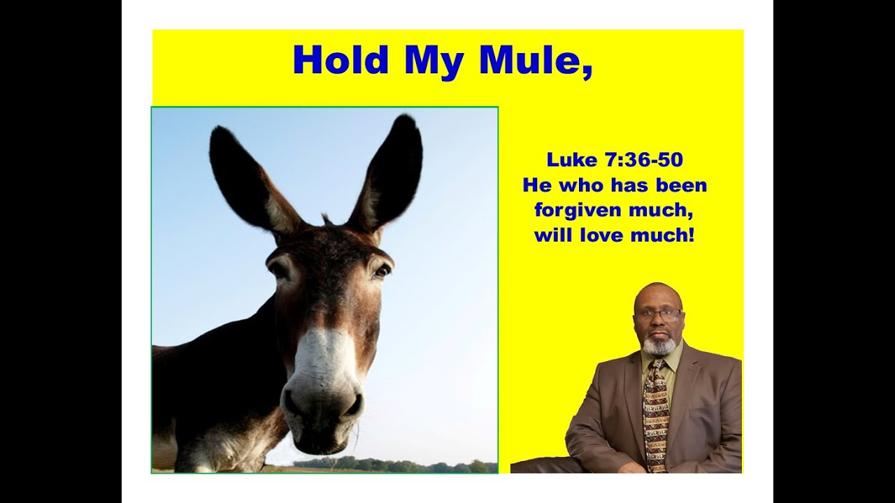 Hold My Mule
