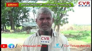 Srikakulam Farmers Facing Problems over No Rain Fall | Lack of Water Facilities | CVR News