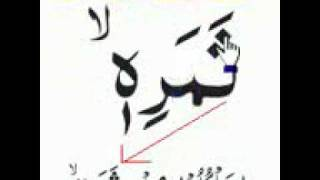036-114-Sura Ya Seen Qari Nawaz Marwat  Word by word.mp4