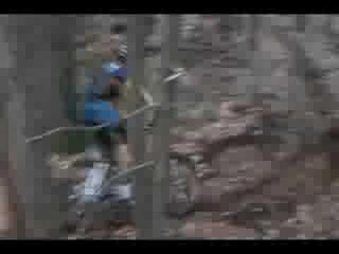 Wendell State Forest:Nipmuck