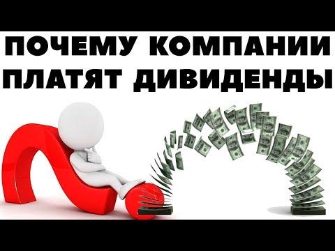 Какая выгода компании платить дивиденды? Почему выплачивают дивиденды по акциям?