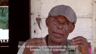 Yangambi: Où l'histoire devient l'avenir (version complète)