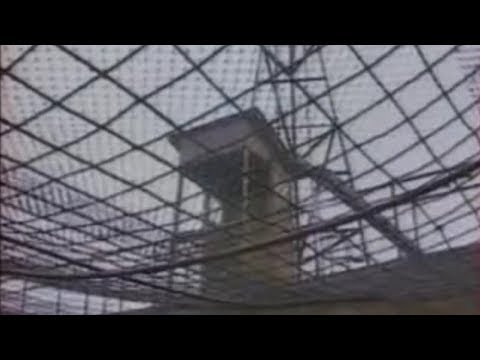 Криминал 90х. Кавказкие Курдские ОПГ
