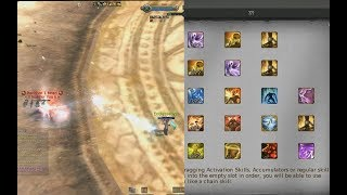 Aion 5.4 Best Bard PvP Customised Skill Use