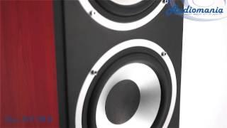 Напольная акустика Elac FS 58.2(http://www.audiomania.ru/napolnaya_akustika/elac/elac_fs_58-2.html Напольные акустические системы FS 58.2 входят в модельный ряд компании..., 2013-08-23T06:20:33.000Z)