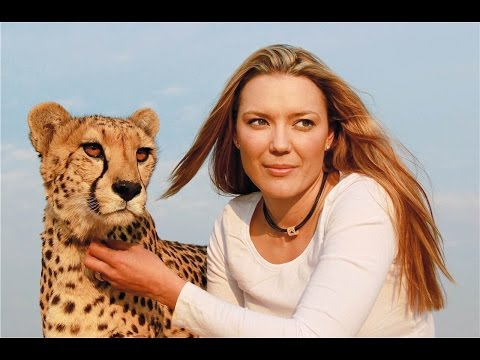 Cette femme est l'amie des guépards - ZAPPING SAUVAGE