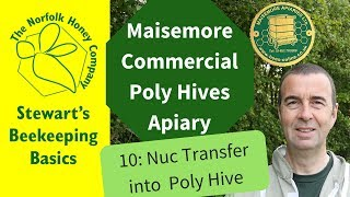 Transfer of a Nuc into a Maisemore Commercial Poly Hive