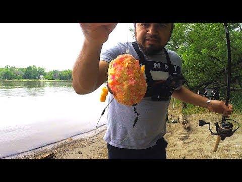 Consejos Para Pescar CARPAS - Pescando Carpas Con Maiz