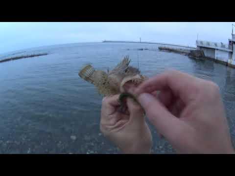Rockfish 2019 Сочи 8 октября джиг риг ерши горбылек каменный окунь Игорь Зинковский