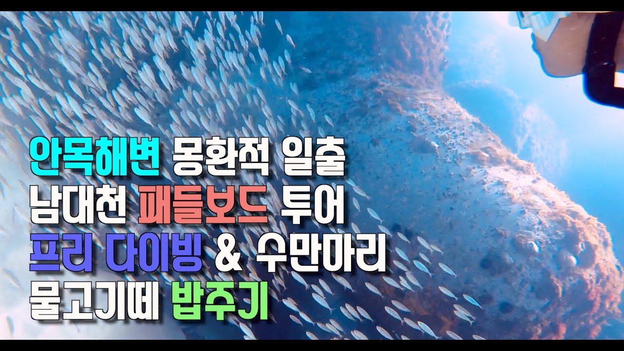 안목해변 남대천 패들보드, 프리다이빙 여행,  스캇&성희.