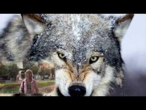 Клип Мурат Тхагалегов - Волки умирают в одиночку