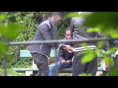 Drogen-Alarm in Linz