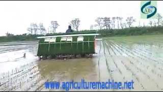 10 rows high speed rice transplanting machine www agriculturemachine net 0