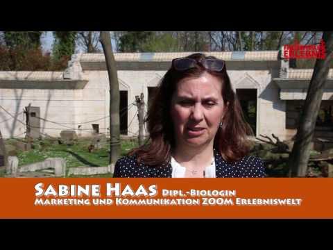 Zoom Erlebniswelt Saisoneroeffnung 2017 Interview Sabine Haas