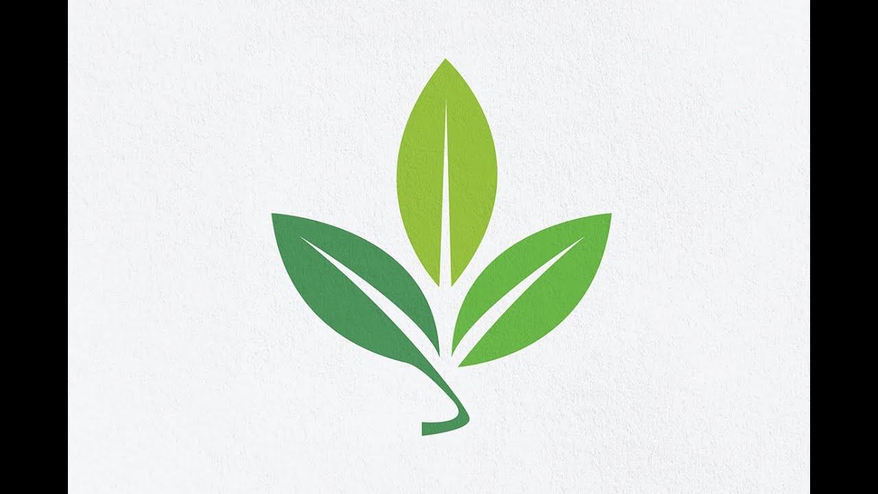 Related Keywords & Suggestions for leaf logo design