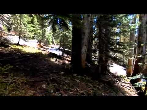 Purcell Mt trail ~ #285 ~ Scenic view!