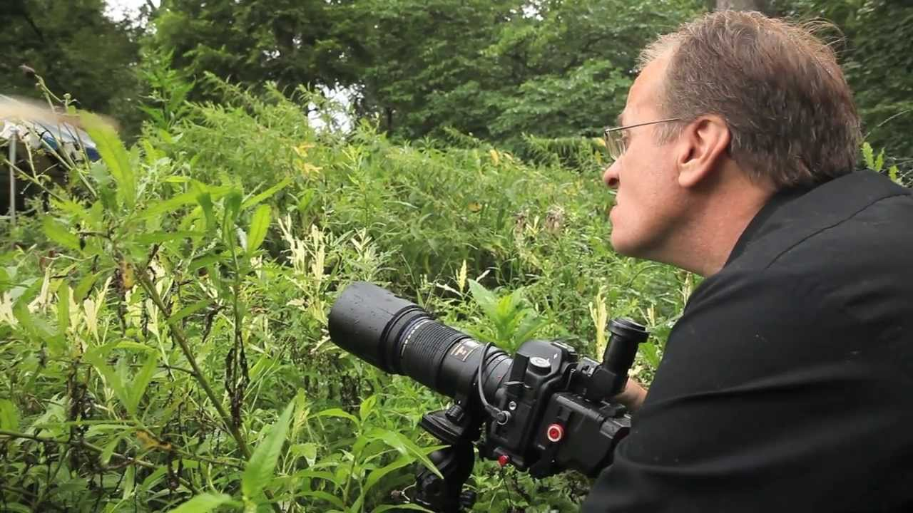 shooting macro photography with rick lieder youtube