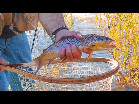 Fly Fishing the Boulder River in Big Timber, Montana - Day 1