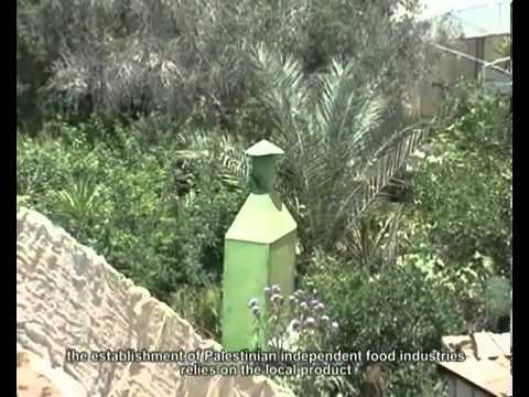 National Energy Globe Winner Palestine Rajeh Abbas