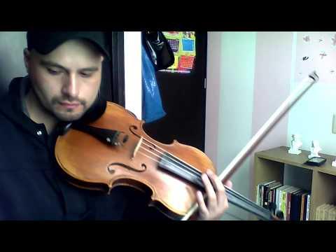 Primer movimiento del concierto para Viola y Orquesta de J. C. Bach/Casadessus