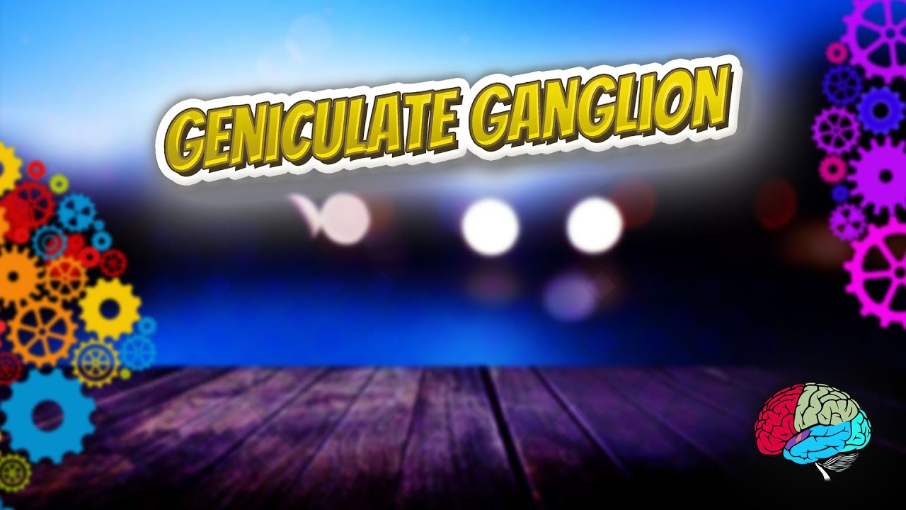 Geniculate ganglion - Know It ALL 🔊✅ - YouTube