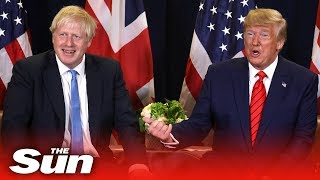 'Boris Johnson isn't going anywhere' Trump on court ruling