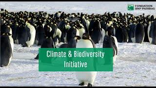 Climate & Biodiversity Initiative - Selection process