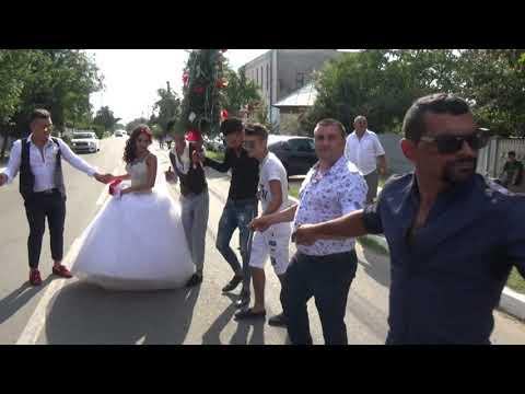 Download nunta pistri parte 6