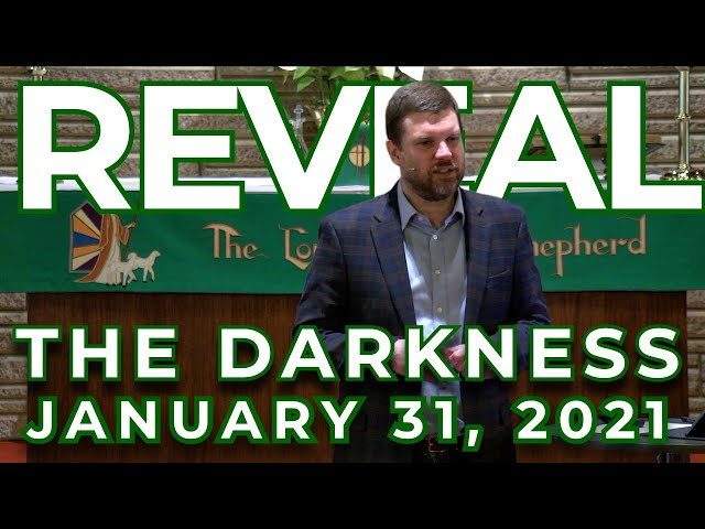 REVEAL: Revealing the Darkness