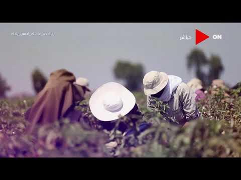 صباح الخير يا مصر - أبرز مميزات برنامج -فاس- لدعم صغار المزارعين  - 11:58-2020 / 7 / 29