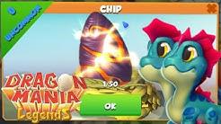 NEW CLAN UPDATE GAMEPLAY! Hatching Chip Egg! - Dragon Mania Legends [Update 16 DML]