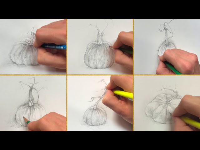 Drawing Pumpkins for Giveaway!
