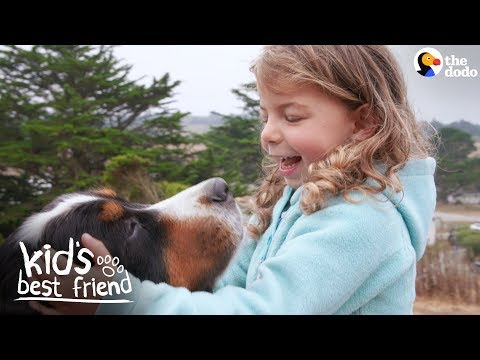 download Enormous Dogs Love Taking Care Of Their Little Sister | The Dodo Kid's Best Friend