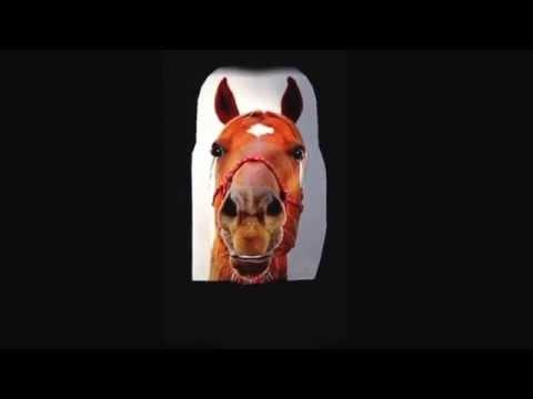 Lee Mansfield talking horse