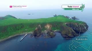 【空撮動画「トド島」Amazing the scenery ~礼文島】