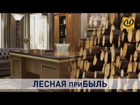 Лесопереработка в Беларуси. Что мы видим сегодня?