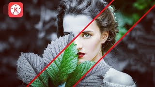 KineMaster Tutorial: New Effect On Picture || Technical Bibhash Pro