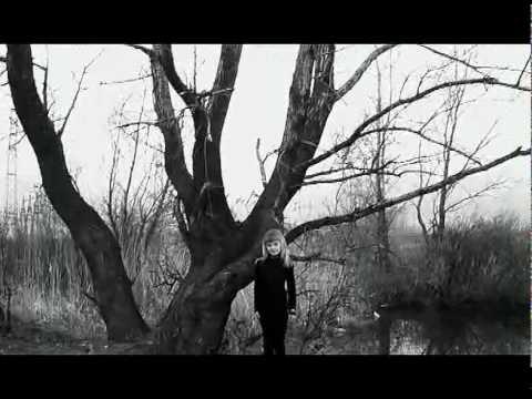 Steven Wilson- The 78