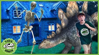 Giant Dinosaurs & Skeleton Escape! Dinosaur Adventure for Kids & Pretend Play with Mystery T-Rex Toy