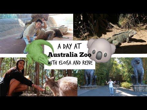 A DAY AT AUSTALIA ZOO