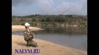 Жерех - кастмастер, бомбарда (архивное видео памяти Миши  Полухина)