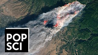 This is What Wildfires Look Like from Space